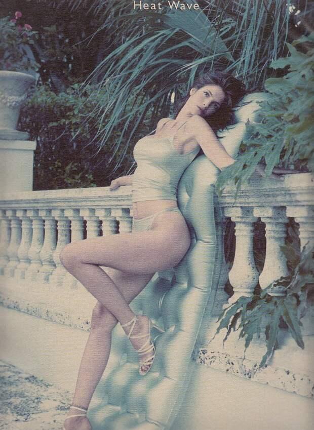 Красотка из 90-ых Стефани Сеймур.