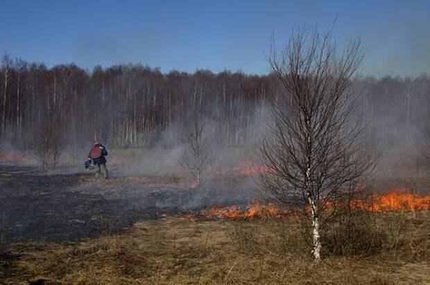 Аномально высокие летние температуры могут привести к новому возгоранию торфяников, что надо делать