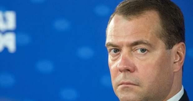 Медведев возмущен: в лесной отрасли действуют целые коррупционные синдикаты