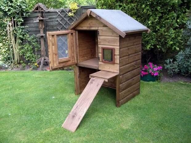 Обустраиваем уютное жилище для кошки на даче