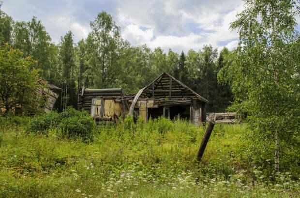 Фото с https://abc-24.info/rastess-propavshaya-derevnya-v-sverdlovskoj-oblasti/