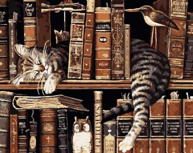 Кот - книголюб. (Картинка с сайта spbkartina.ru)
