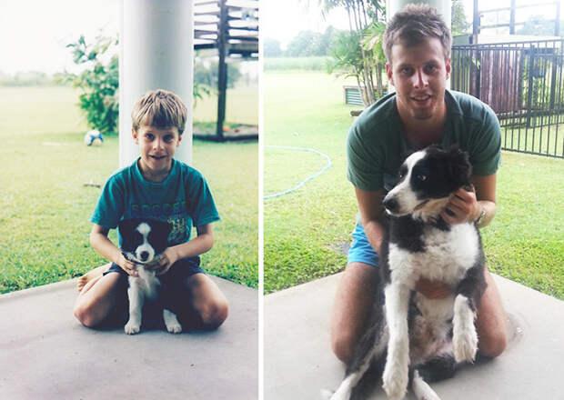 А вот и Монти! Вместе 15 лет до и после, друзья, собаки, фото
