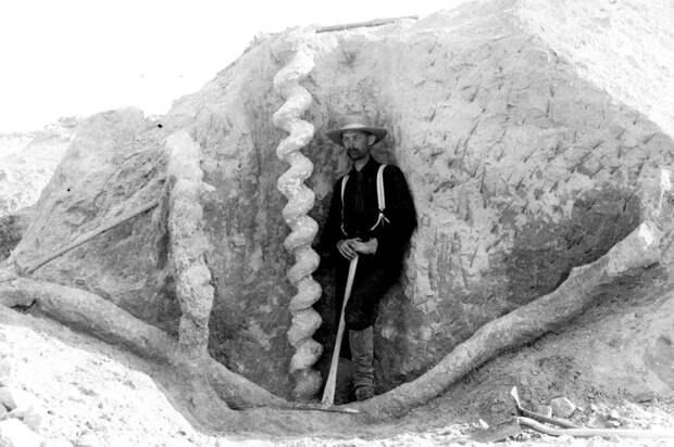 Рабочий XIX века на фоне спиралевидного объекта. Источник фото: https://salik.biz/upload/000/u1/b2/03/e47eb2ac.jpg