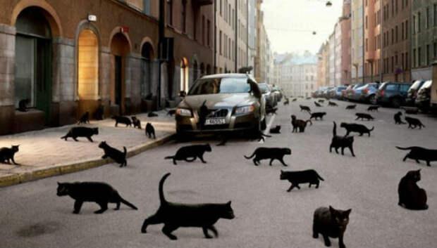 12 сумасшедших суеверий со всегомира