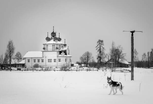 Исчезающие деревянные церкви Русского Севера (ФОТО)