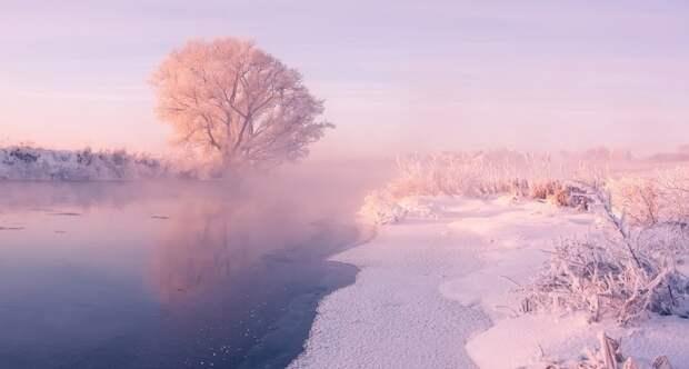 Winterbeauty01