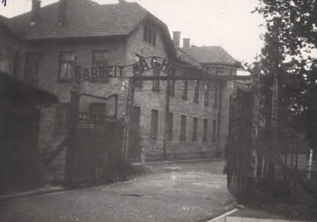 Бордель в лагере смерти «Освенциме»: к чему принуждали узников и узниц.