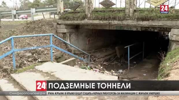 Столичные тоннели. Почему подземные переходы в Крыму не ремонтируют?