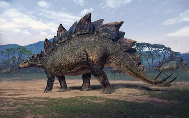 В Китае обнаружили самый крошечный след стегозавра