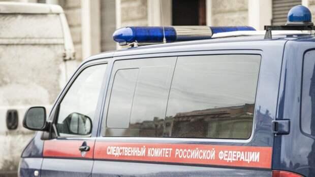 Пропавшую пятиклассницу нашли убитой в лесополосе в Нижегородской области