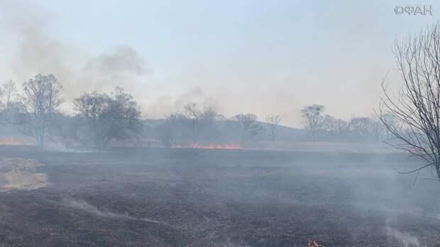 Приморье продолжает гореть, особый противопожарный режим ввели на всей территории