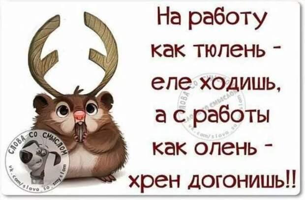 Смешные комментарии. Подборка chert-poberi-kom-chert-poberi-kom-15580230082020-6 картинка chert-poberi-kom-15580230082020-6