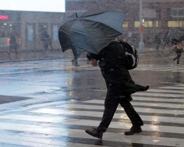 В Москве из-за сильного ветра объявлено штормовое предупреждение