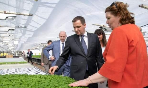 ВАрхангельской области создадут сеть магазинов спродукцией местных аграриев