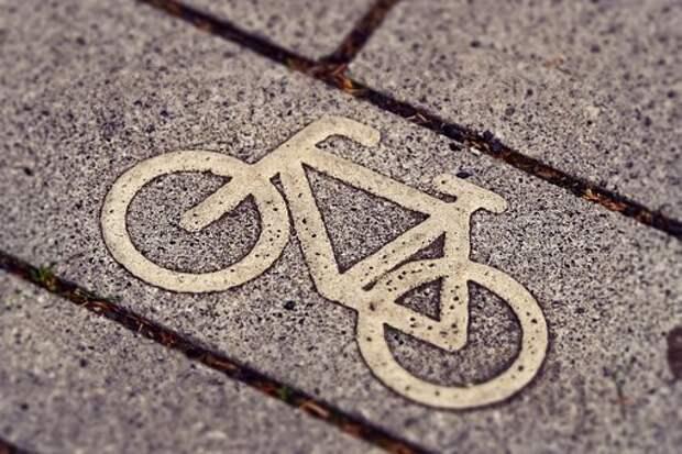 Велосипедная Дорожка, Велоспорт