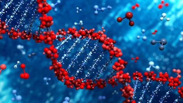 Очень хорошие мутации: генетика против СПИДа