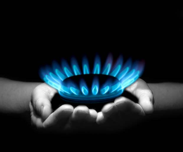 Какая духовка лучше: газовая или электрическая