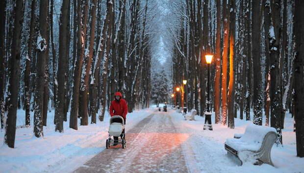 Средняя температура первой декады февраля в Подмосковье превысит норму на 6–7 градусов