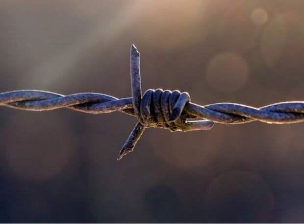 В деле сбежавших из колонии заключённых появились первые задержанные