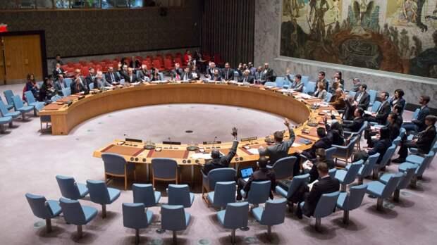 Научное сообщество ЦАР выступило против вмешательства ООН в дела республики