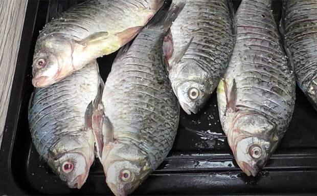 Жарим карасей по совету рыбака. Чистить и выбирать кости больше не нужно, они прожарились