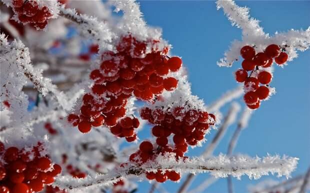 Синоптик рассказал о сроках наступления весны в этом году