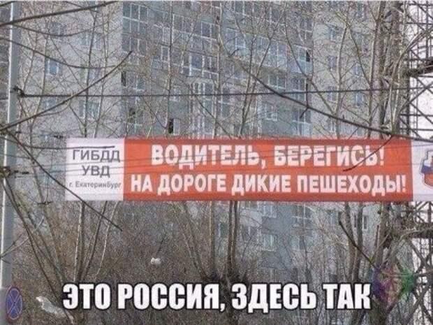 1474381825_1444979907_auto_prikoli_12
