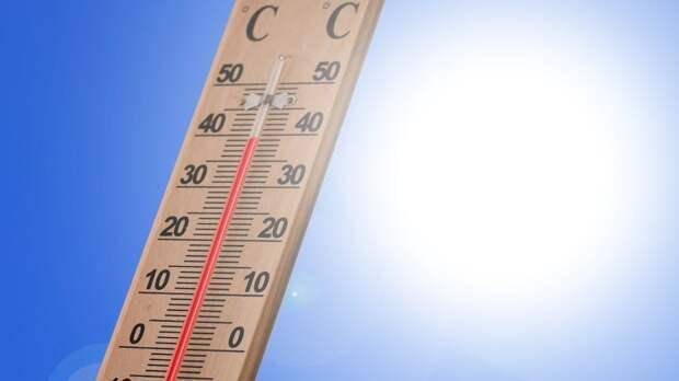 Гидрометцентр предупредил об аномальной жаре в ряде регионов России
