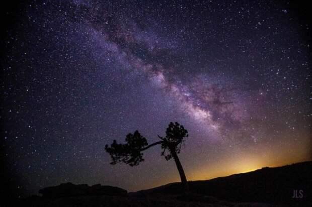 Ночь Небесных Светлячков