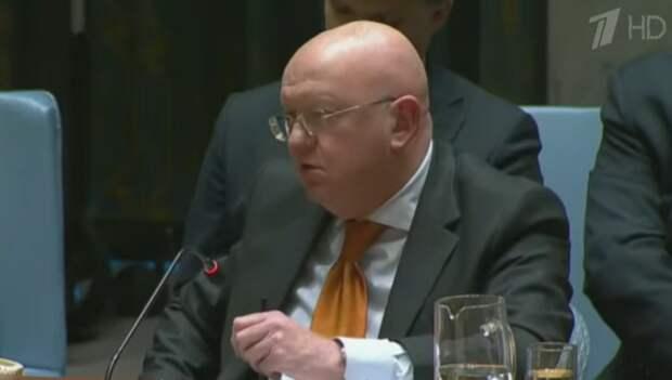 Небензя поставил на место немецкого коллегу неудобным вопросом по Сирии