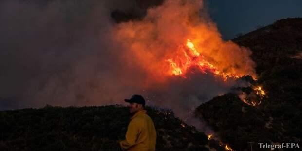 В США не утихают лесные пожары, число жертв растет: апокалиптические фото и видео - ТЕЛЕГРАФ