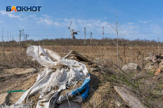 Склон Мамаева кургана превратили в помойку, завалив мусором и покрышками