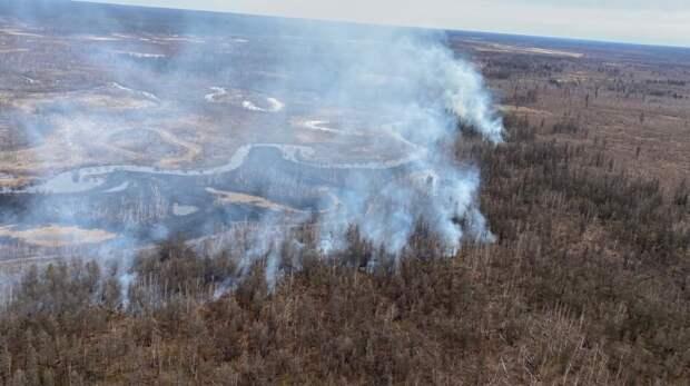 В Якутии тайга горит уже на 6,6 млн гектаров