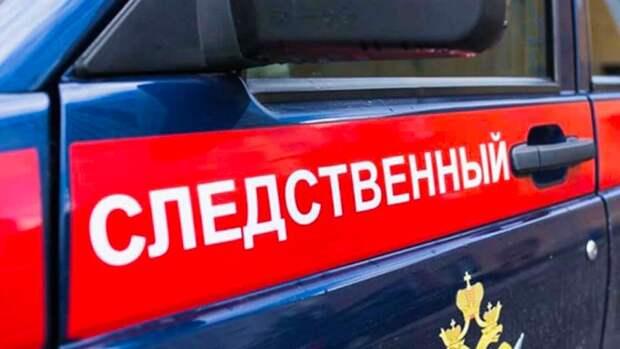 Исчезновение двух школьниц в Горном Алтае стало основанием для проверки СК