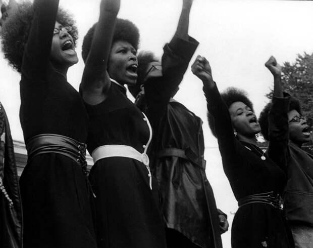 Социальные конфронтации в США 1960-х - 1970-х годов: Леворадикальная Партия черных пантер   (8)