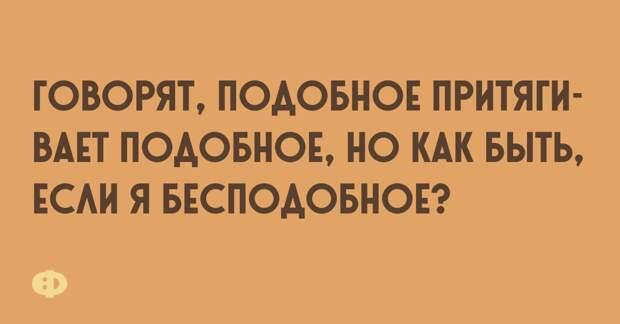 анекдоты+