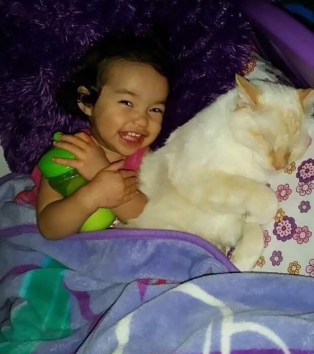 За пару лет они заметно подросли, а их дружба стала еще крепче  девочка, дружба, кот