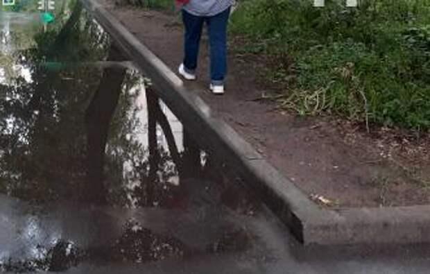 На Новороссийской улице из-за лужи на тротуаре вытоптали газон
