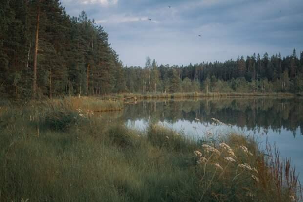 Красоты России (#652)