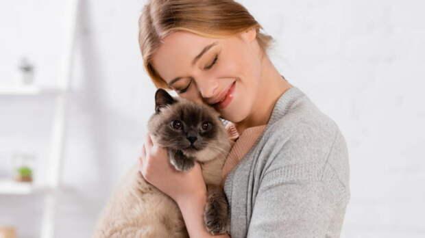 Как понять, что кошка любит хозяина: специалисты назвали 8 признаков