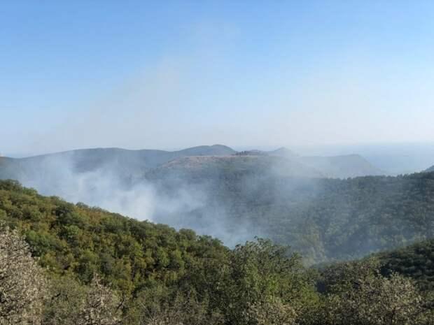 В Судаке более пяти часов боролись с лесным пожаром