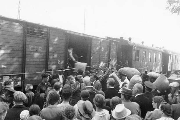 За что жителей Псковской области депортировали в Сибирь поле войны