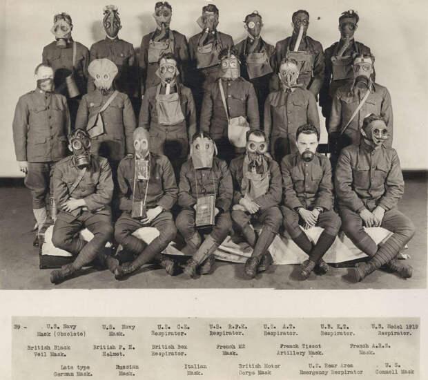 Голуби и противогазы: другая сторона Первой мировой