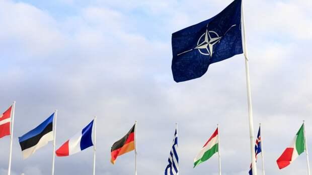 """В Киеве рассказали о """"российской энергопомехе"""" на пути вступления Украины в НАТО"""