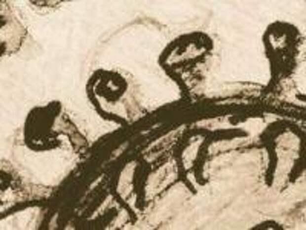 """25 000 лет назад жителей Восточной Азии мучала древняя """"корона"""""""