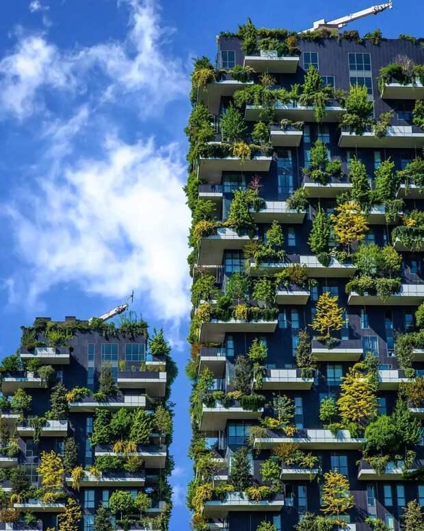 7 вертикальных садов по всему миру, которые могут превратить города в зеленые оазисы