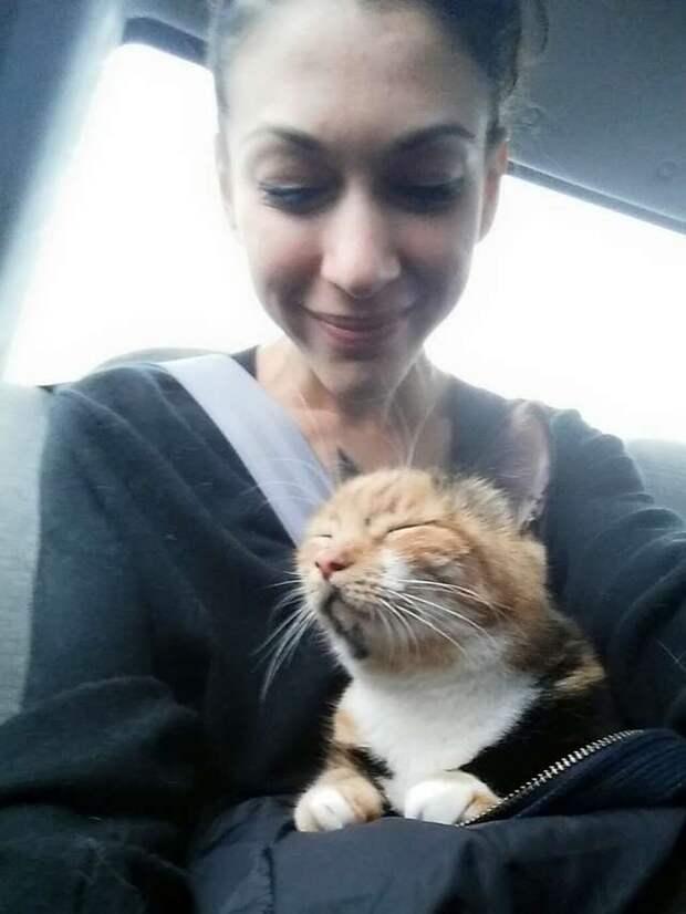 хозяйка с кошкой