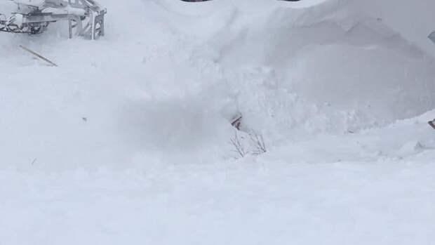 Четыре человека погибли после схода лавины во французских Альпах