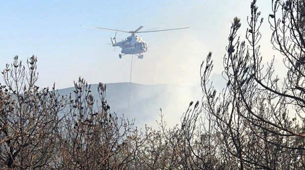 Крымские огнеборцы ликвидировали лесной пожар под Судаком